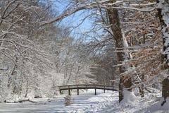 Ponte di Snowy Fotografia Stock Libera da Diritti