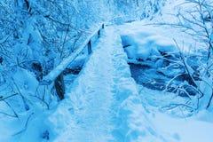 Ponte di Snowy sopra una torrente montano Fotografia Stock Libera da Diritti