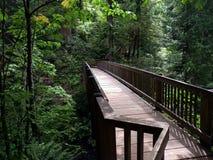 Ponte di tranquillità Fotografie Stock