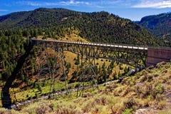 Ponte di Yellowstone Fotografia Stock