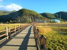 Ponte di Zouhun del lago di lugu Immagine Stock