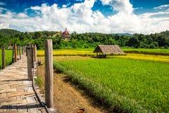Ponte di Zutongpae con il fondo della natura di scena del giacimento del riso Fotografia Stock Libera da Diritti