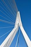 Ponte do Erasmus imagens de stock royalty free