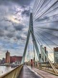 Ponte do Erasmus - Rotterdam imagem de stock