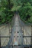 Ponte do fio Foto de Stock