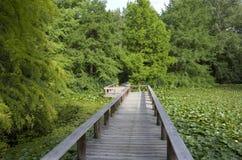 Ponte do jardim Foto de Stock