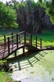 Ponte do jardim Imagens de Stock