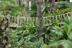 Ponte do jardim e de suspensão Imagens de Stock