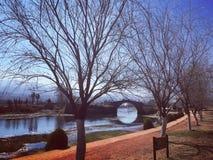 Ponte do lago Imagens de Stock Royalty Free