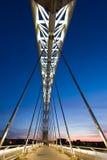 Ponte do Lusitania imagem de stock