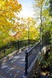Ponte do outono Foto de Stock Royalty Free