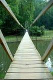 Ponte do pé Imagem de Stock