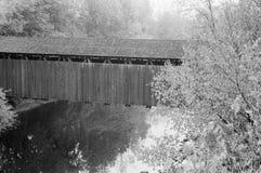 Ponte do pé Foto de Stock