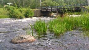Ponte do país Fotos de Stock Royalty Free