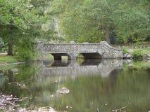 Ponte do parque do Cobblestone Imagens de Stock