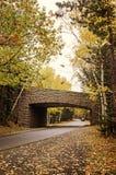 Ponte do parque nacional do Acadia Fotos de Stock