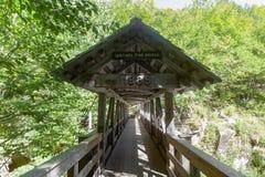 Ponte do pinho da sentinela Foto de Stock Royalty Free