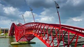 Ponte do pitão Imagens de Stock