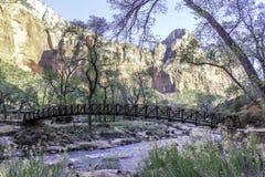 Ponte do rio de Zion Imagens de Stock Royalty Free