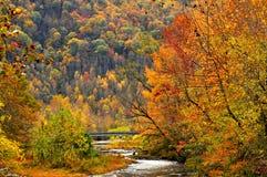 Ponte do rio do pombo na queda Fotografia de Stock Royalty Free