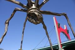 Ponte do Salve do La e a aranha gigante Imagem de Stock Royalty Free
