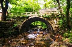 Ponte do templo Imagem de Stock Royalty Free