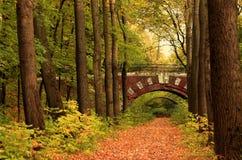 Ponte do tijolo na floresta do outono fotografia de stock royalty free