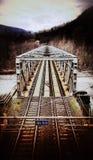 Ponte do trilho Imagens de Stock