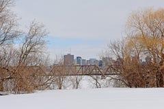 Ponte do trilho do príncipe de Gales sobre o rio congelado de Ottawa com as torres do escritório da casca atrás, quadro por árvor fotografia de stock royalty free