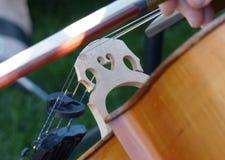 A ponte do violoncelista Imagens de Stock Royalty Free