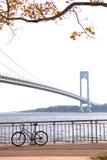 A ponte dos Verrazano-estreitos Imagem de Stock