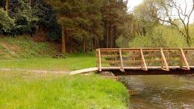 Ponte e corrente del piede un giorno soleggiato 4k video d archivio