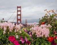 Ponte e flores de porta dourada imagens de stock royalty free
