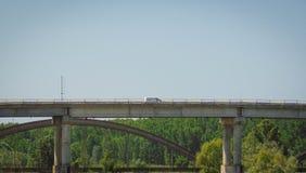 Ponte e floresta Fotografia de Stock Royalty Free