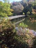 Ponte e floresta Imagem de Stock Royalty Free