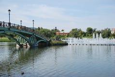 A ponte e a fonte no parque Tsarina \ 's Imagem de Stock