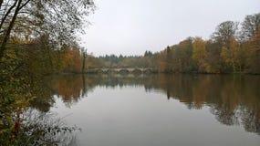 Ponte e lago a Windsor Great Park Surrey fotografia stock