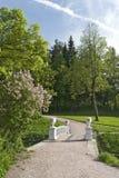 Ponte e lilac no vertical do parque imagens de stock