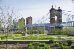 A ponte e os edifícios de suspensão de John A Roebling Suspension Bridge histórico em Cincinnati, Ohio Foto de Stock Royalty Free
