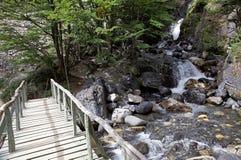 Ponte e rio ao longo da fuga ao Torres del Paine no parque nacional de Torres del Paine, Patagonia chileno, o Chile foto de stock royalty free