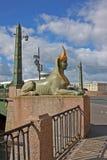 Ponte egípcia em St Petersburg, Rússia Fotos de Stock