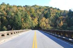 Ponte em árvores coloridas Imagens de Stock Royalty Free