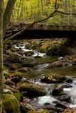 Ponte em forquilhas rujir Foto de Stock Royalty Free