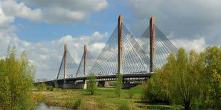 Ponte em Zaltbommel, Países Baixos Imagens de Stock Royalty Free