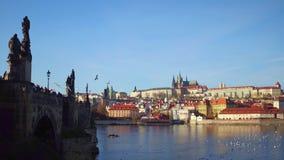 Ponte famoso di Charles, gabbiani volanti, cigni di galleggiamento e castello di Praga distante un giorno soleggiato, repubblica  Fotografia Stock