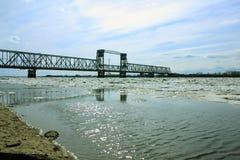 Ponte ferroviario Immagini Stock Libere da Diritti