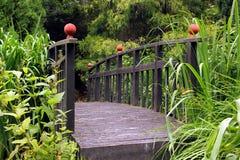 Ponte giapponese Fotografia Stock Libera da Diritti