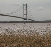 Ponte Humber, Inghilterra, il BRITANNICO - erba asciutta e cieli grigi immagine stock
