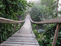 Ponte na floresta Imagem de Stock Royalty Free