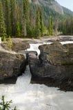 Ponte natural Fotos de Stock Royalty Free